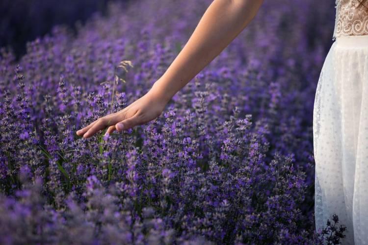 Herbal Biohacking